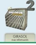 RHIZOFLO PREMIUM  GIRASOL, Agro Gestion Mercedes, VILLA MERCEDES